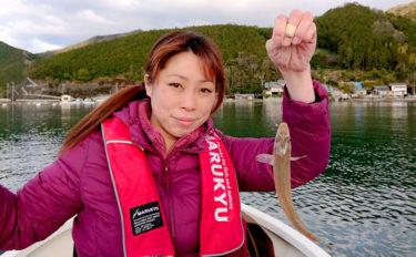 アジングタックルでボートキス釣り 22cm頭に42尾【三重・海山】