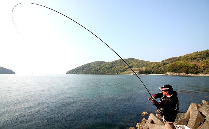 チヌ釣り大会観戦レポ 大物7kgで完全優勝【香川県・小豆島】