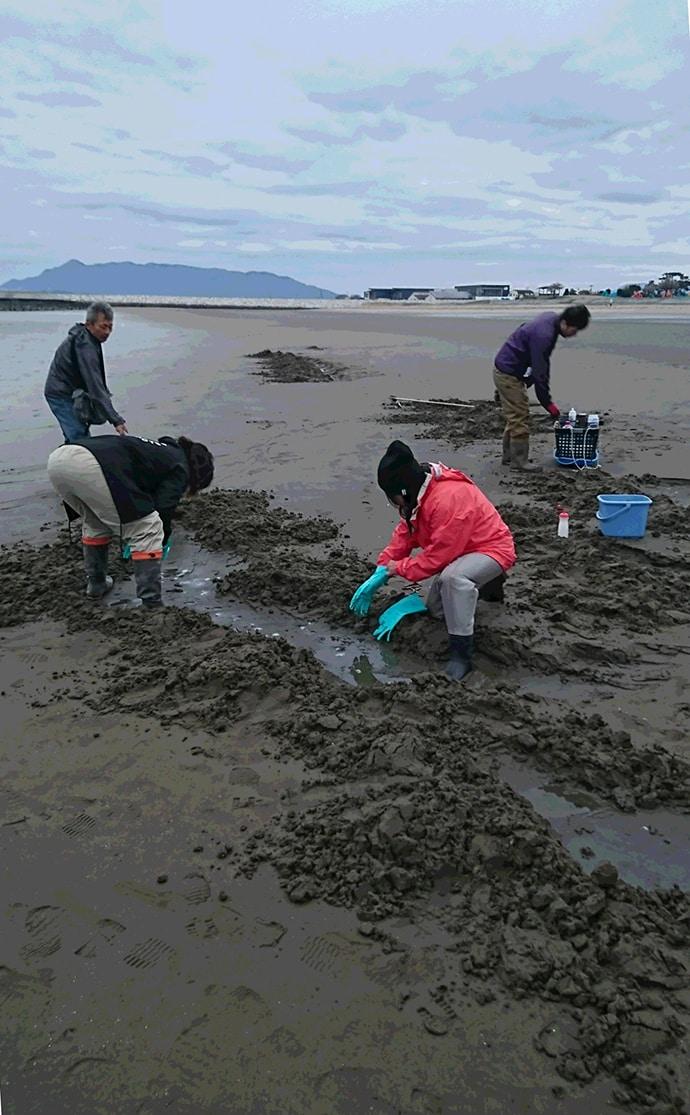 みんなで楽しめるマテ貝掘りのキホンを解説 砂抜き不要も嬉しい!