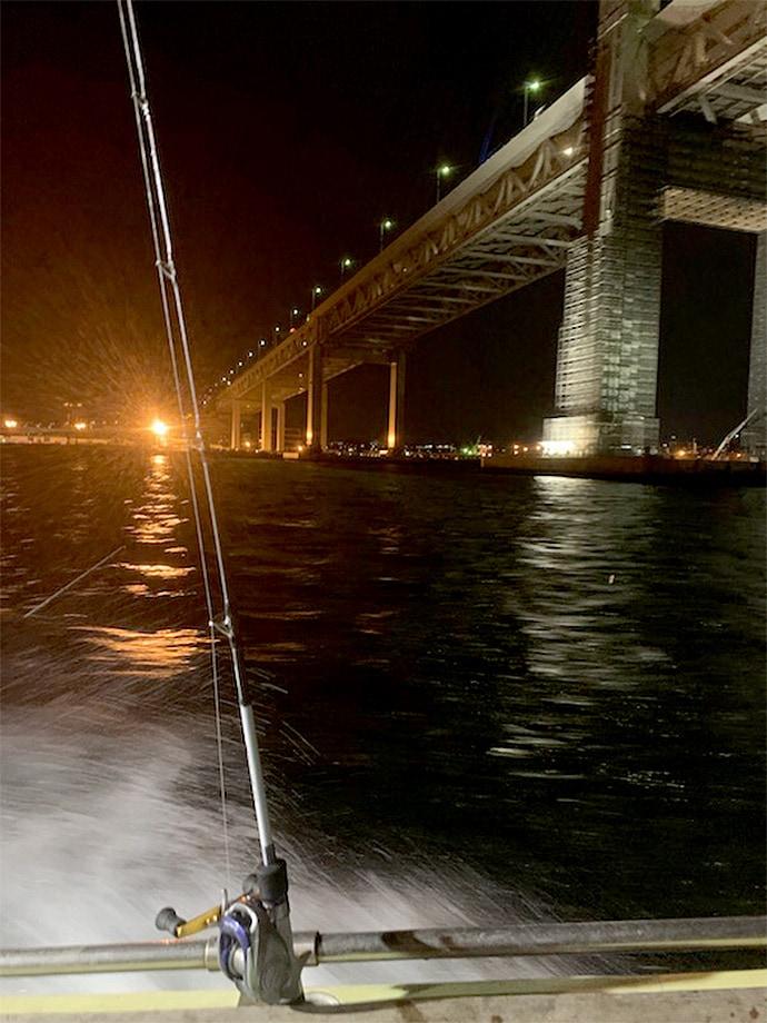 夜のベイブリッジを眺めながらカサゴ入れ食い!【神奈川・新明丸】