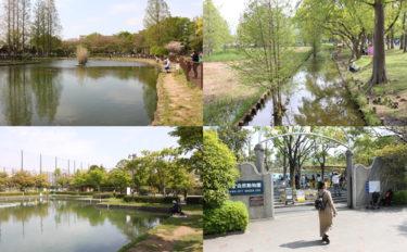 陸上の動物や鳥にも出会える都内の公園釣り場3選 子連れで出かけよう