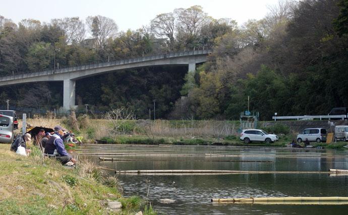 今週のヘラブナ推薦釣り場【神奈川県・八菅ファミリー釣り場】