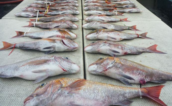 【玄界灘】沖釣り最新釣果情報 船中マダイ34尾に10kg超ヒラマサ