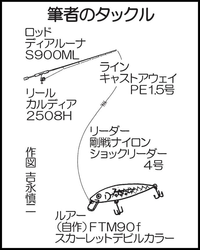稚アユ遡上に合わせたリバーシーバスゲーム ミノーで55cm頭に2尾