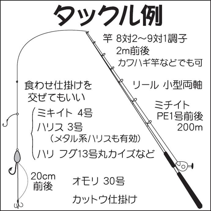 ショウサイフグ狙いのカットウ釣り ピンポン玉級混じらず良型揃い!