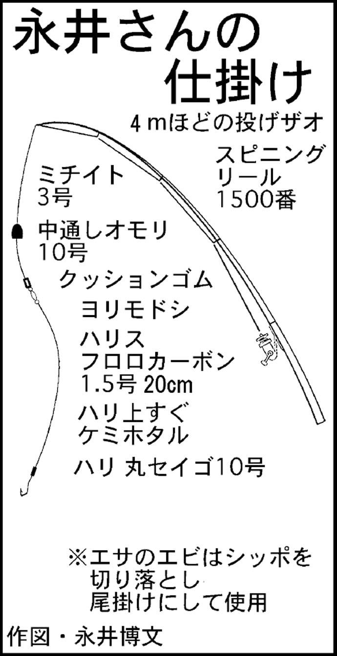 出勤前に天然ニョロニョロ70cm&60cmキャッチ【愛知県・筏川】