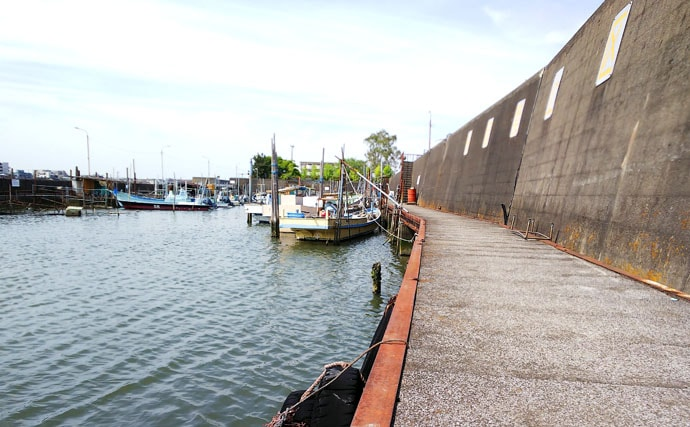 テナガエビ釣りシーズン到来で良型13尾 障害物が狙い目【千葉県】