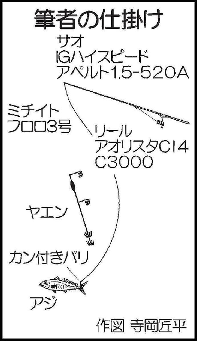 沖堤ヤエン釣りで1kg級アオリイカ9尾キャッチ【宮崎・亀の首堤防】