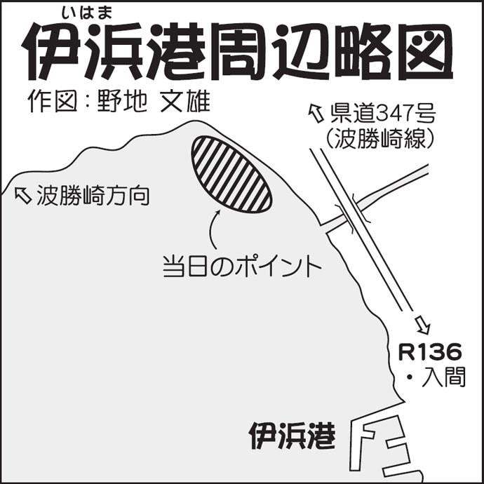 ゴロタでロックフィッシュゲーム 超浅場で20cmムラソイ【南伊豆】
