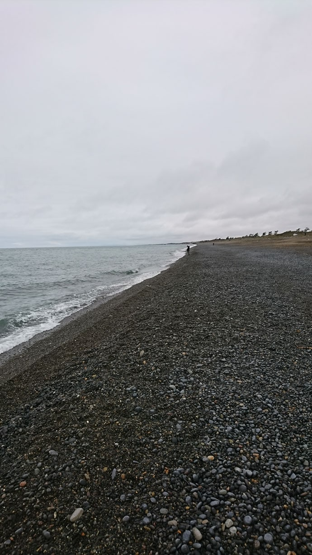 サーフでのショアジギでサゴシ 砂利浜攻略法も解説【石川・伊切海岸】