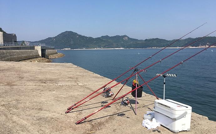 観光がてらの投げキス釣りで23cm頭に19尾【岡山県・北木島】