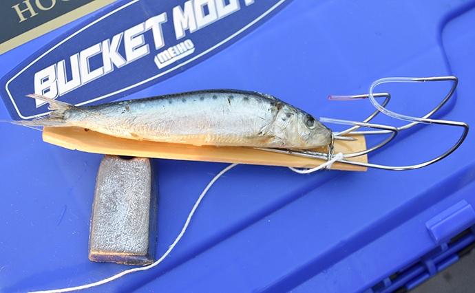 船タコ釣りのメッカ明石沖で検証 テンヤとエギ&スッテどっちが釣れる?