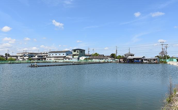関西オススメ釣り場:菅生かかり釣池 大ゴイ狙えてアクセス良好【大阪・堺市】