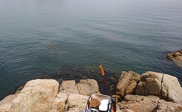 サイズでなく『伸び率』で勝負するフカセ釣り大会へ参戦!【小豆島】