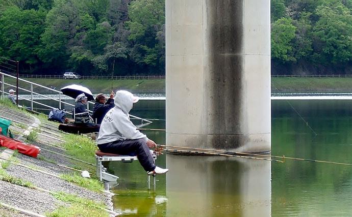 のべ竿での巨コイ釣り 超早アワセで66cm登場【奈良県・白川ダム】