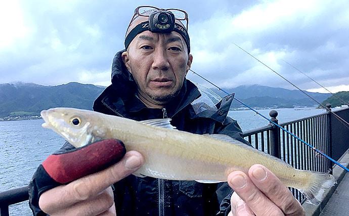 全日本キス投げ釣り選手権で大型シロギス連発 30cm超も【京都府】