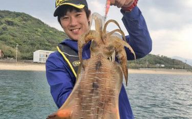 シャローエリアのボートエギングで2kg超えアオリイカ!【福岡県】