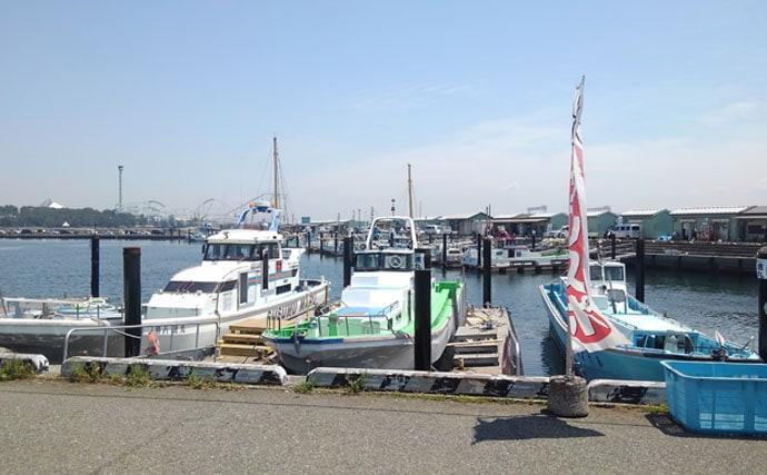 東京湾シロギス船 親切丁寧なアドバイスで25cm頭にツ抜け【進丸】