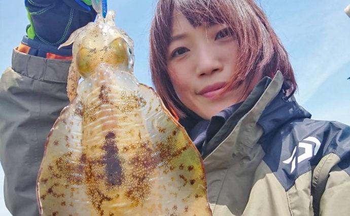 期間限定エリアでのエギングで1.5kgアオリイカ【脇田海釣り桟橋】