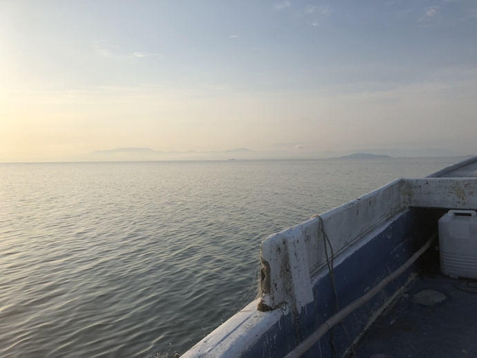 ビワマス狙いレイクトローリング&『ハス』フィッシングで琵琶湖満喫