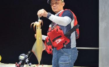 【玄海灘・響灘】夜焚きイカ最新釣果 パラソル混じりで150杯以上!