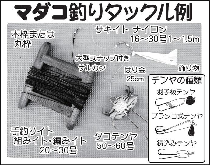 東京湾テンヤマダコ釣りキホンおさらい マダコハイシーズン突入!