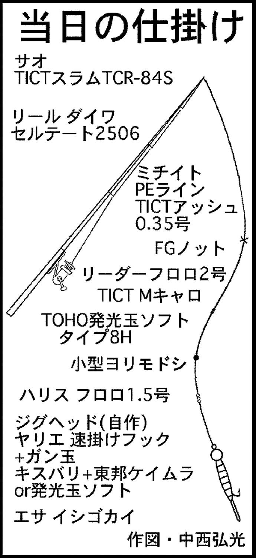 アジングタックル流用のウルトラライト投げ釣りでデカギス登場!