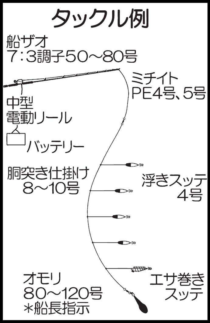 九州エリア夏の風物詩『夜焚きイカ』胴突きタックルでの釣り方キホン
