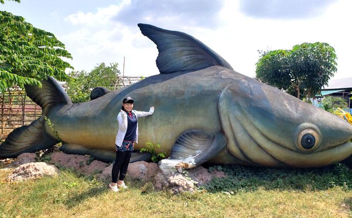 タイの怪魚釣り堀でメコンオオナマズ10本ノック達成【ブンサムラン・フィッシングパーク】