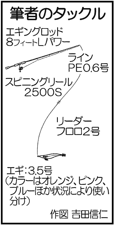 ボートエギングで1.96kg頭に船中アオリ47杯【福岡県・響灘】