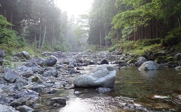 渓流ミノーイングで美しいイワナ&アマゴと戯れる【奈良県・山上川】