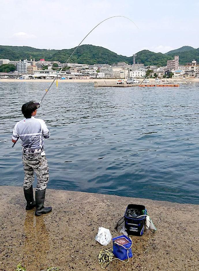 須磨一文字でのノマセ釣り青物狙い 「メクリアジ」入れ食いに【兵庫】