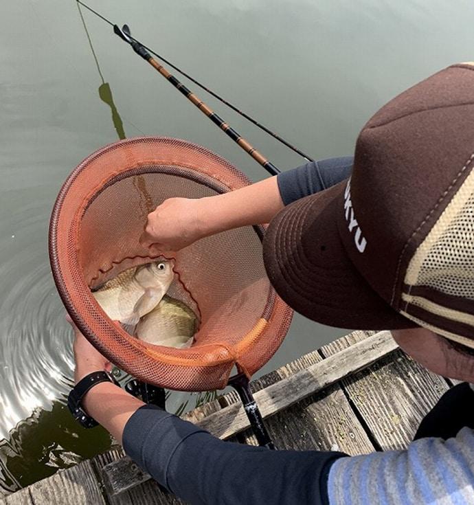 ペアで争うヘラブナ釣り大会に夫婦で出場【滋賀県・甲南ヘラの池】