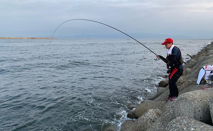 チヌ狙いフカセ釣りで45cm頭に18尾 落とし込みに続いて絶好調!