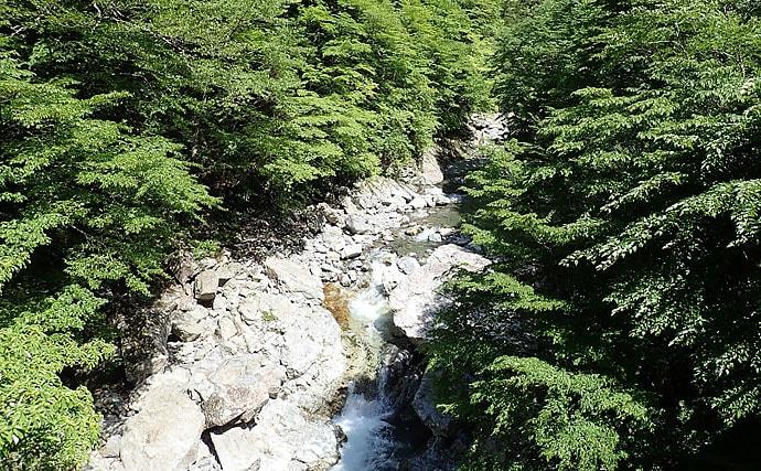 神秘の谷で大峰ブルーに包まれ天然アマゴとイワナがお目見え【奈良県】