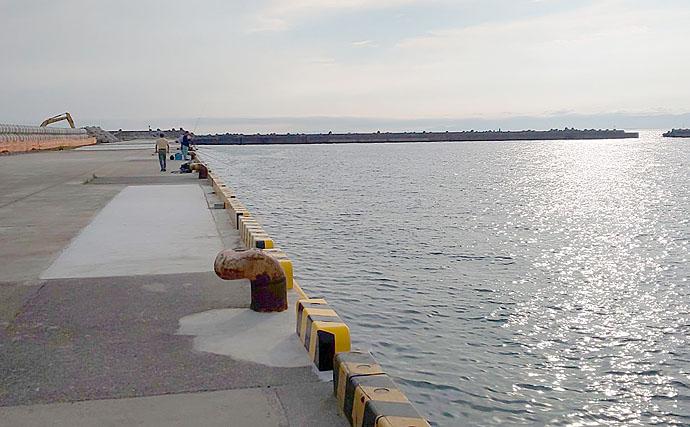 和歌山港に回遊中のタチウオをワインドで狙う 夏タチ好シーズン突入!