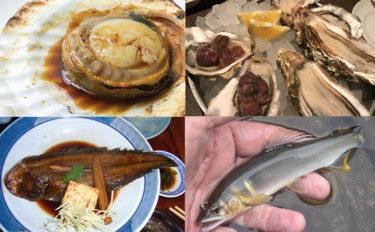【東日本編】7月に旬を迎える美味しいサカナ5選 各地方別に紹介