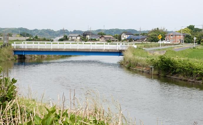 今週のヘラブナ推薦釣り場【千葉県・新七間川】