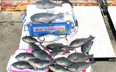 梅雨グロ狙いフカセ釣りで51cm口太クロ出た!【鹿児島県・久多島】
