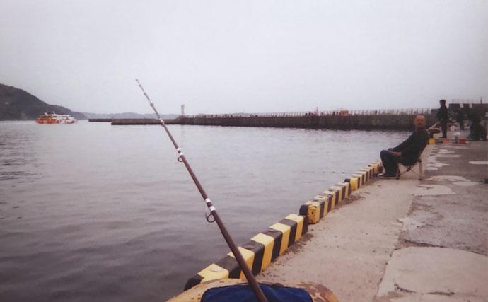 投げシロギス釣行で30尾 止めを交ぜたスローなサビきが吉【熱海港】