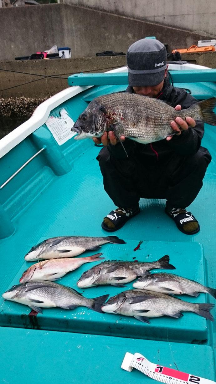 【三重県・イカダ&カセ】カカリ釣り釣果速報 58cm年無しクロダイ