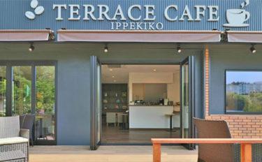 静岡県『一碧湖』にカフェオープンで釣りも解禁 へら師・バサー必見!