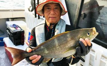 【大分県】イサキ五目船釣果速報 50cm超ジャンボイサキシーズン到来