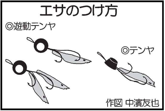 関門海峡テンヤ釣りで60cm超え頭にマダイ20尾【RYUSEI】
