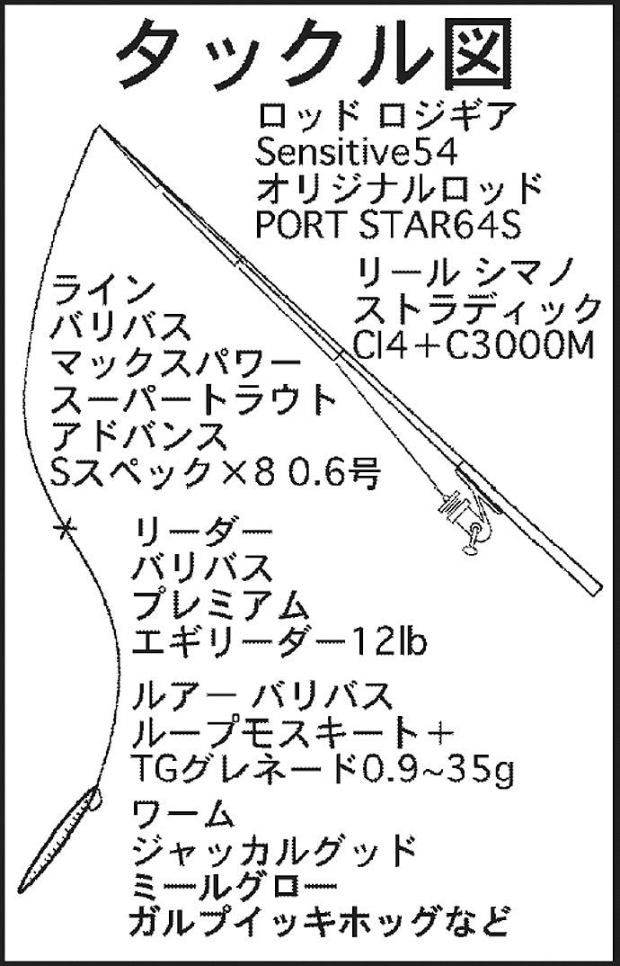 ナイトチニングで50cm級クロダイに40cm級キビレ【潮見橋周辺】