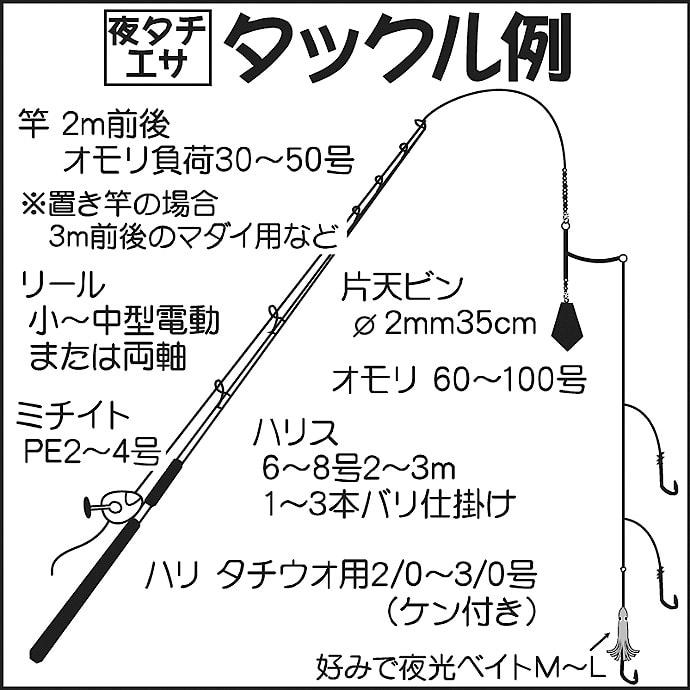 駿河湾『夜タチウオ』のキホン解説 ドラゴン混じりでシーズン好発進!