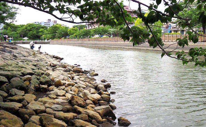 テナガエビ釣りで全長20cmオス シーズンは半ば【新左近川親水公園】
