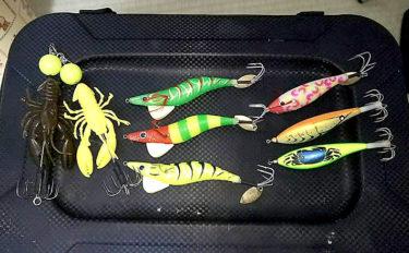 明石ダコ数釣り期に必携のマダコ仕掛け3選 潮の速さで使い分けよう!