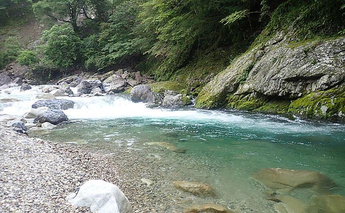 渓流ルアーで26cm大型アマゴ シンキングミノーにヒット【芦廼瀬川】