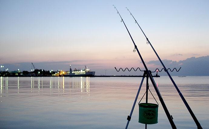 陸っぱりから大型の高級魚が狙える『ノマセ釣り』4つの釣法を徹底解説